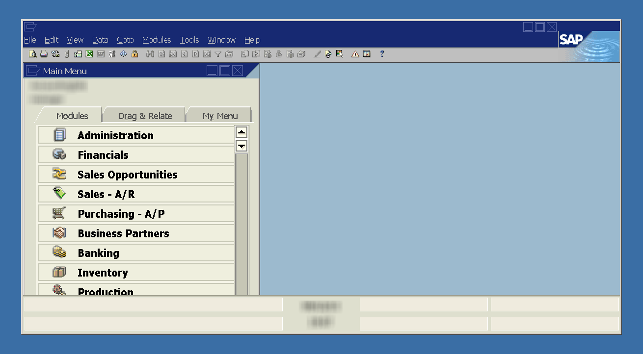 SAP Business One on Windows Server