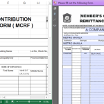 Pag-ibig MCRF And STLRF Excel And PDF Fillable Forms